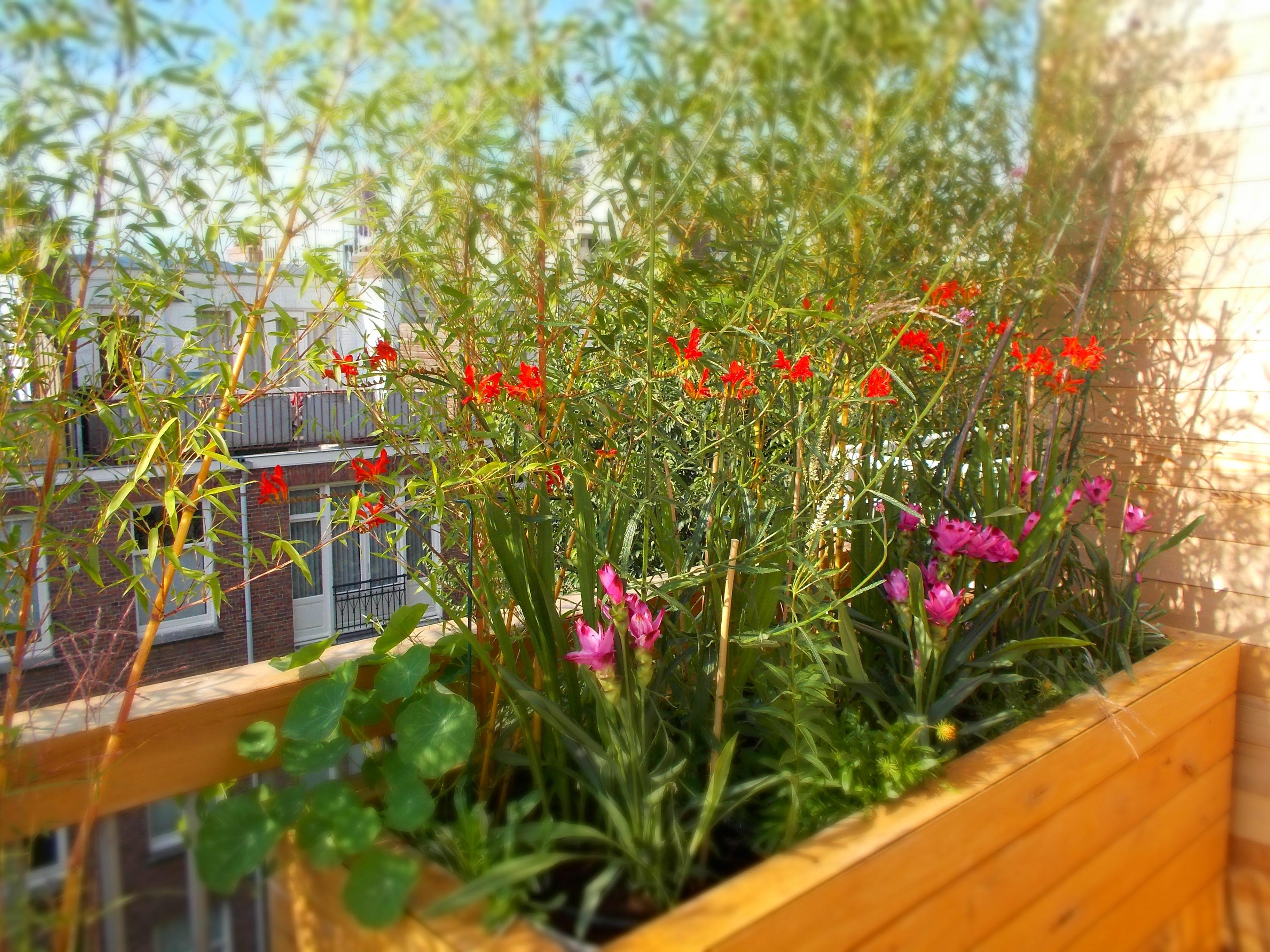 Bohemian Balkon Inrichting : Balkon inrichten free balkon inrichten van klein appartement with